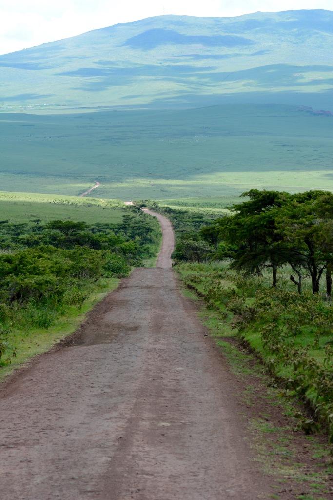 Up to the Ngorongoro Crater rim