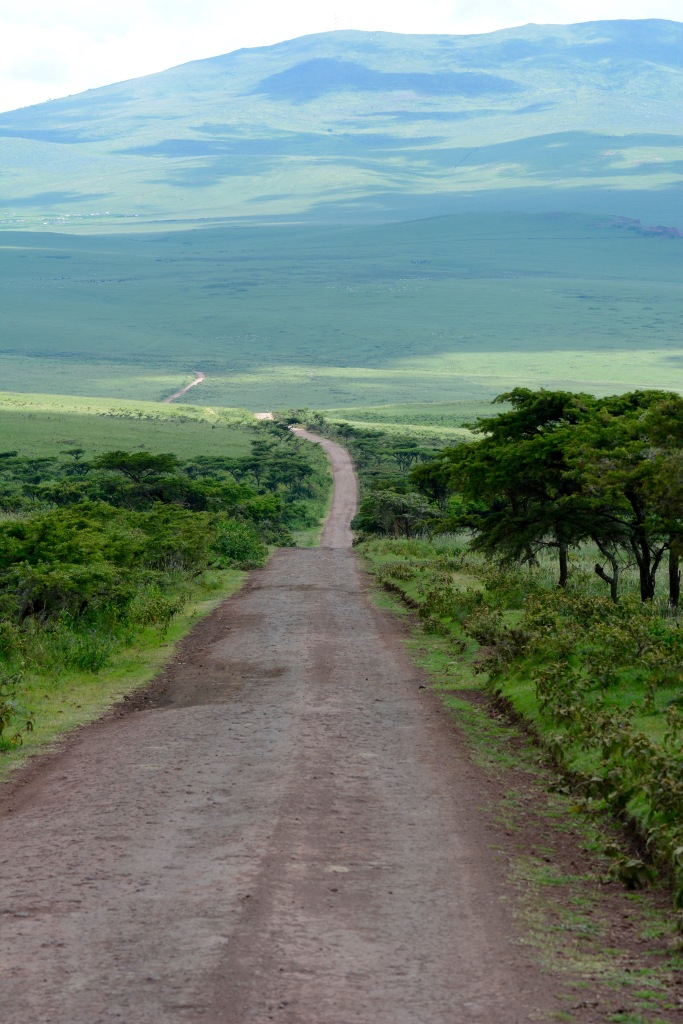 Up to the Ngorongoro Crater rim