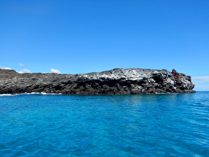 Our dive site on the south side of Bartolome