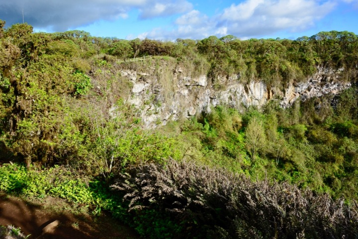 Los Gemelos - one of two huge sinkholes on Isla Santa Cruz