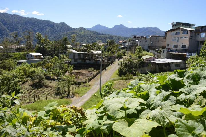 A view in Nanegalito